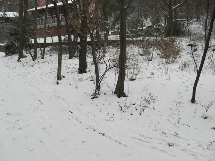 Stavba chata - Pozemok Januar 2009