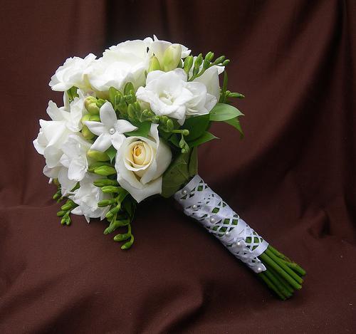 Květiny - Obrázek č. 79