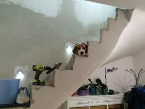 i z nedodelaneho schodiste se hlidkuje primo ukazkove :)