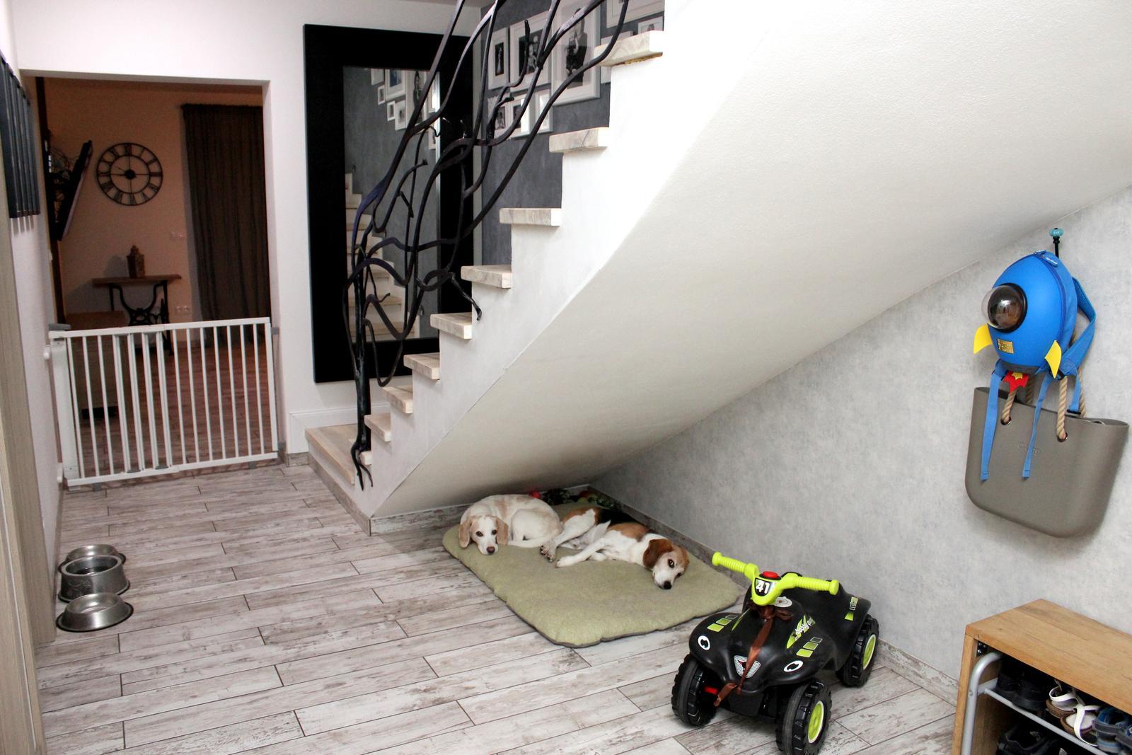 Finální podoba našeho bydlení ... i když člověk nikdy neví ;) - Obrázek č. 12