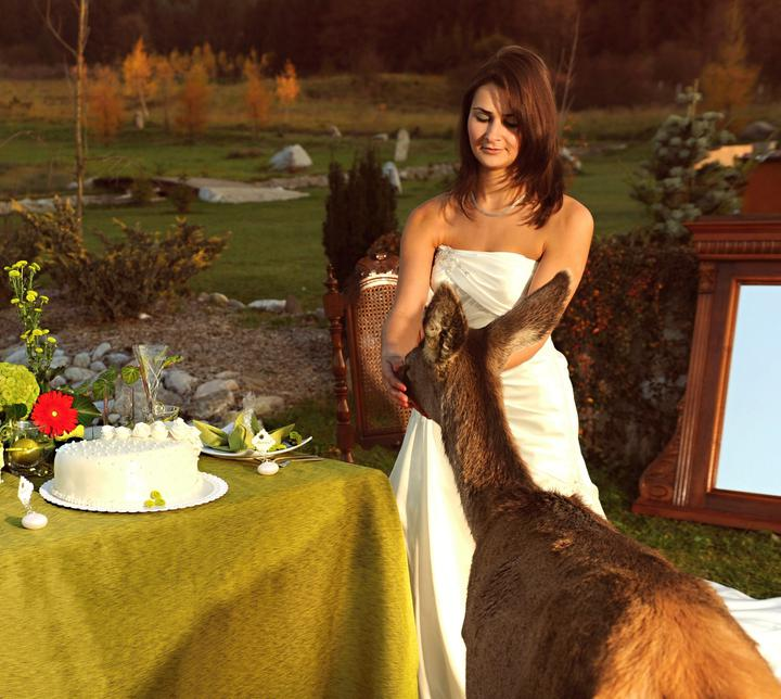 jednaradost - Svadba v exteriéri je zážitkom pre všetkých zúčastnených!