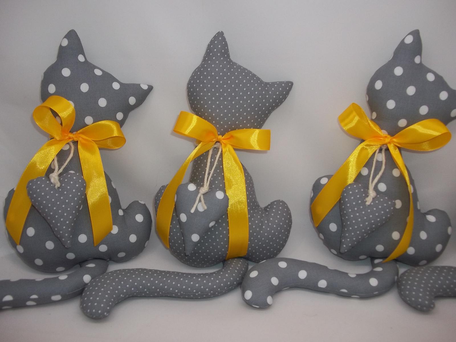 Svetlo sivá mačička - Obrázok č. 4