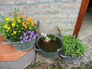 Kvety + voda s leknom + mäta = využité staré plecháče