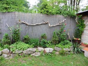 Kým za plotom vyrastú ihličnany tvoriace živý plot a trstina sa rozpadne obzvlášni ju uschnutý koreň stromu od Dunaja.