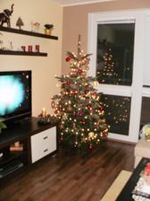 náš krásny živý stromček doma...