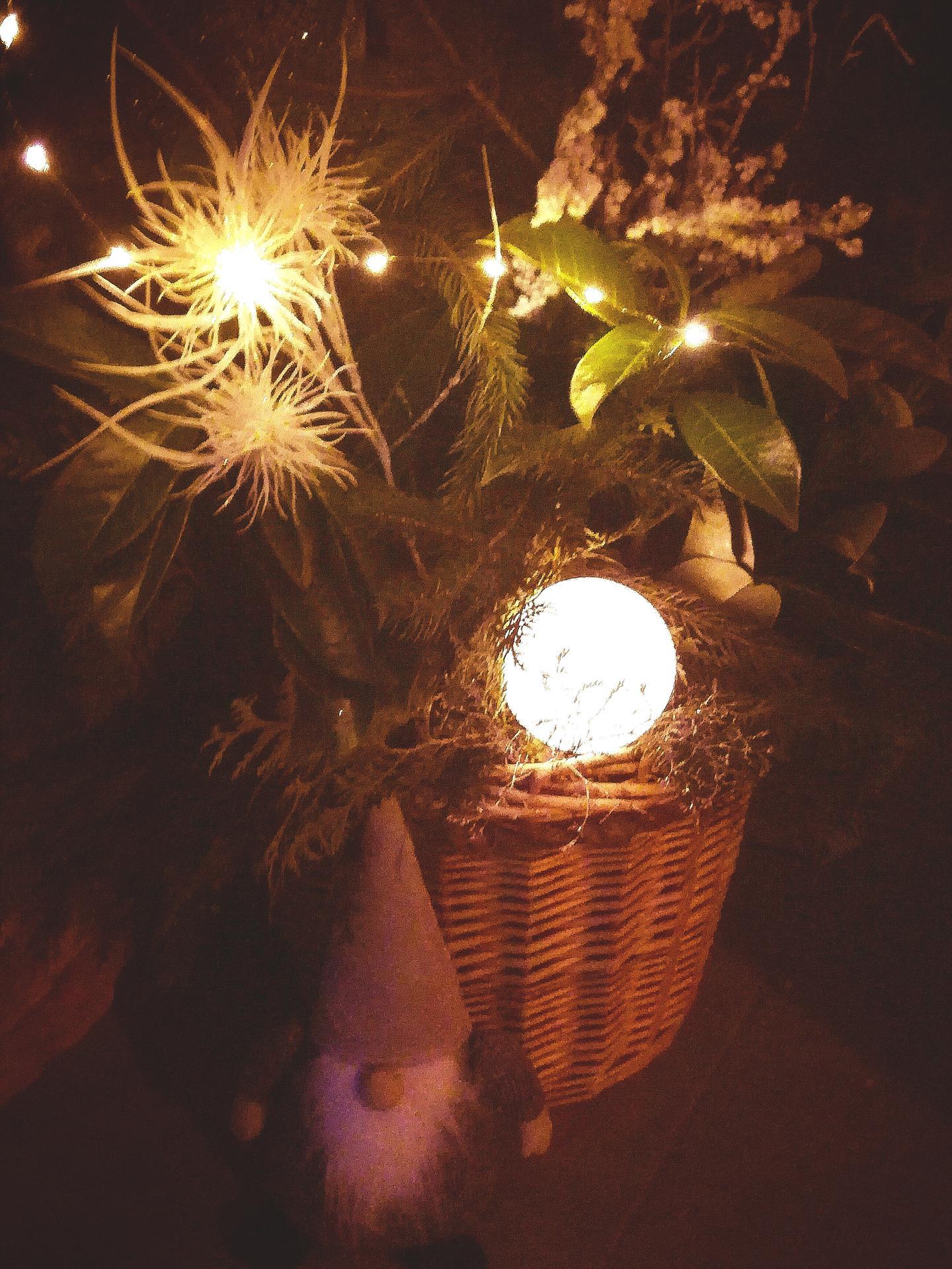 ...vánoční čas v roce 2020🌲🌲🌲❤ - Obrázek č. 20
