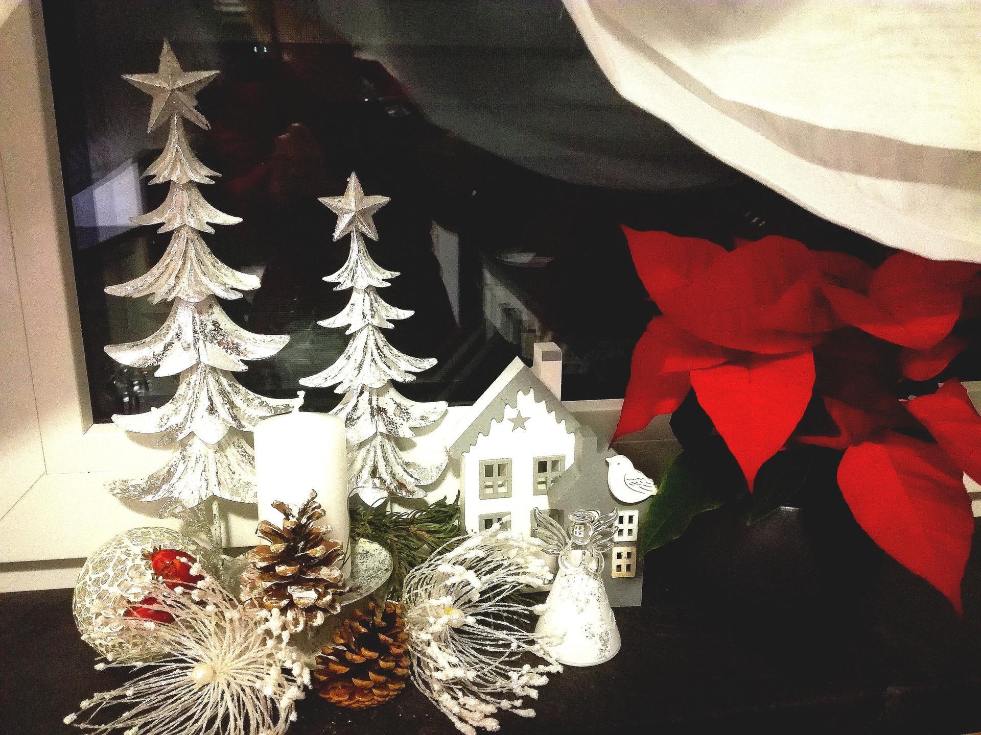 ...vánoční čas v roce 2020🌲🌲🌲❤ - Obrázek č. 36