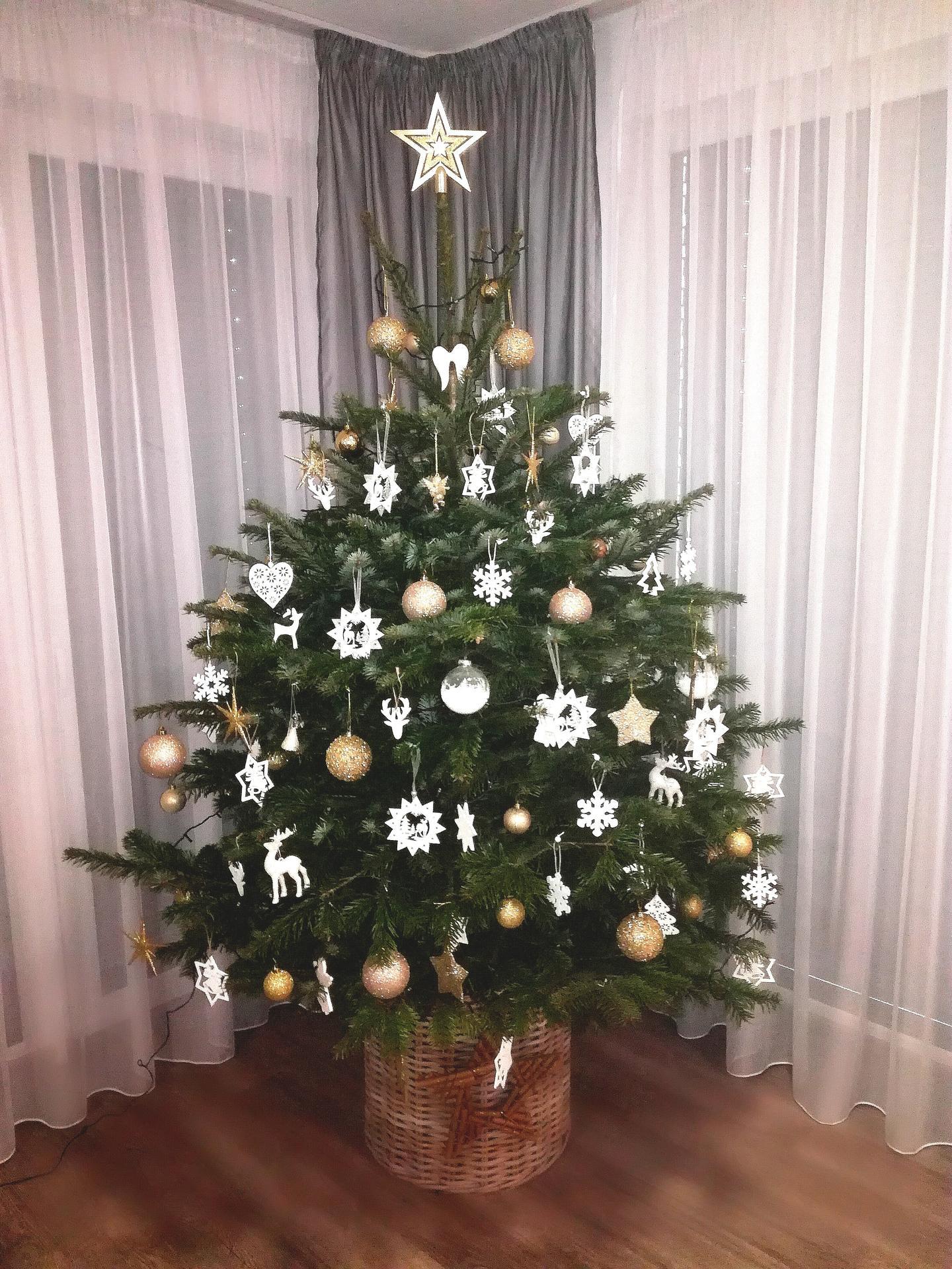 ...vánoční čas v roce 2020🌲🌲🌲❤ - Obrázek č. 52