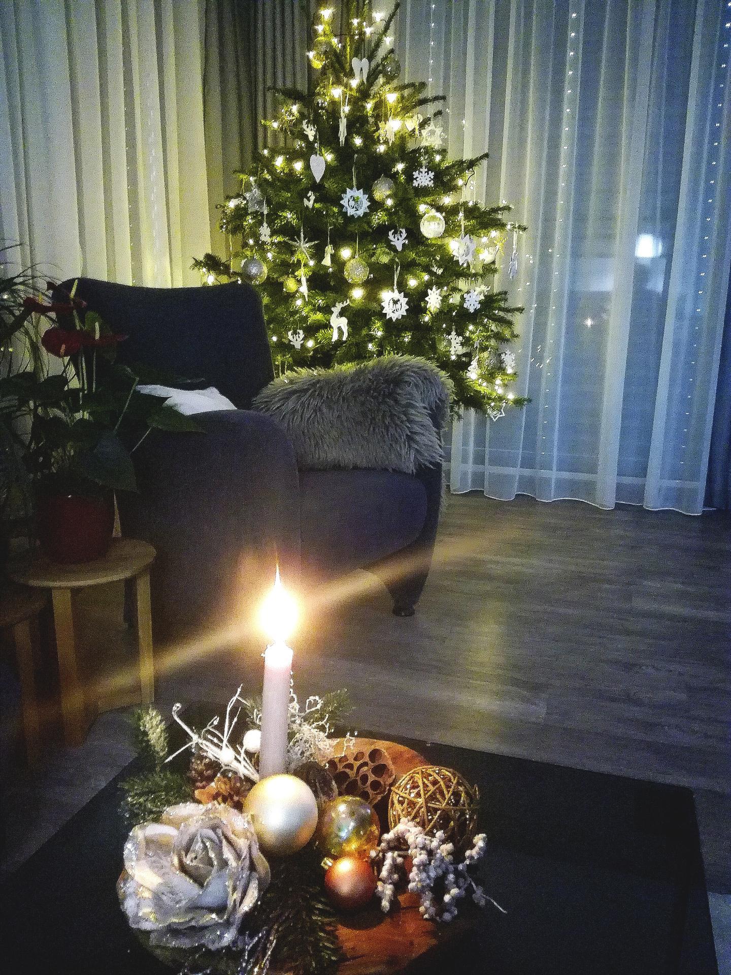 ...vánoční čas v roce 2020🌲🌲🌲❤ - Obrázek č. 53