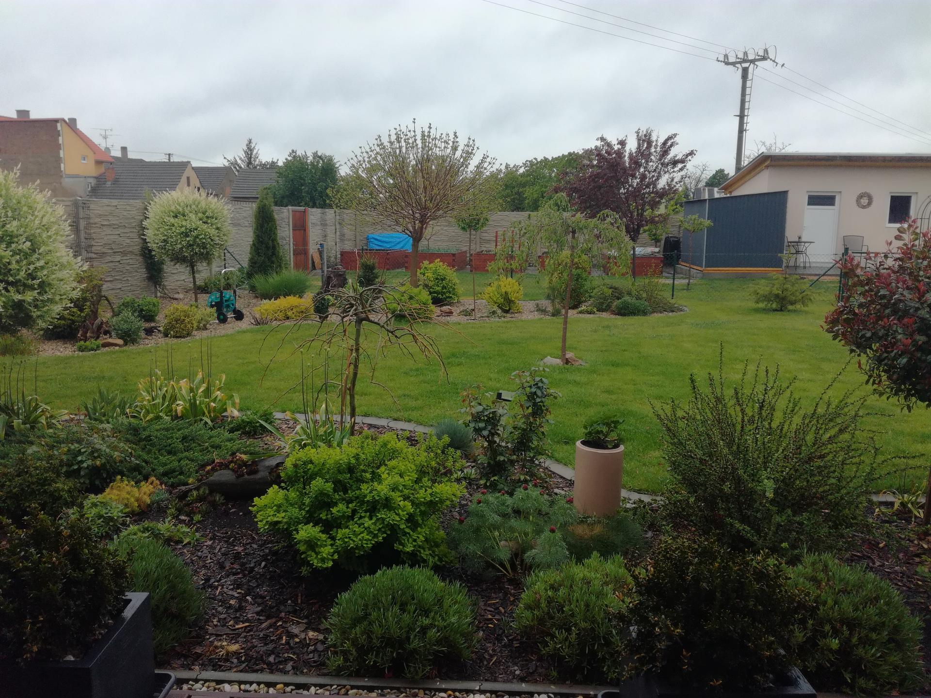 Zahrada 2021 🌲 - Obrázek č. 60
