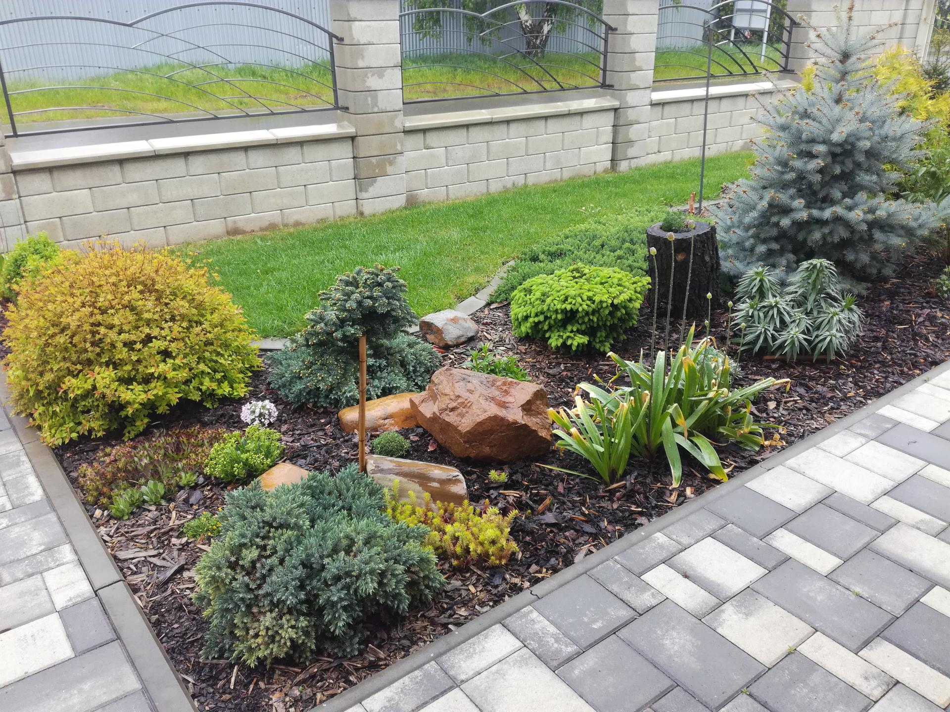 Zahrada 2021 🌲 - Obrázek č. 57