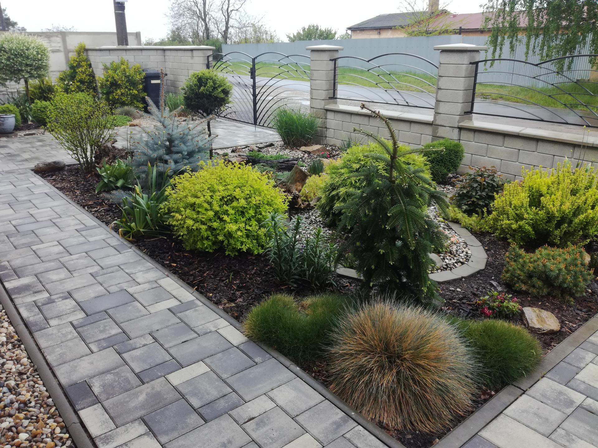 Zahrada 2021 🌲 - Obrázek č. 58
