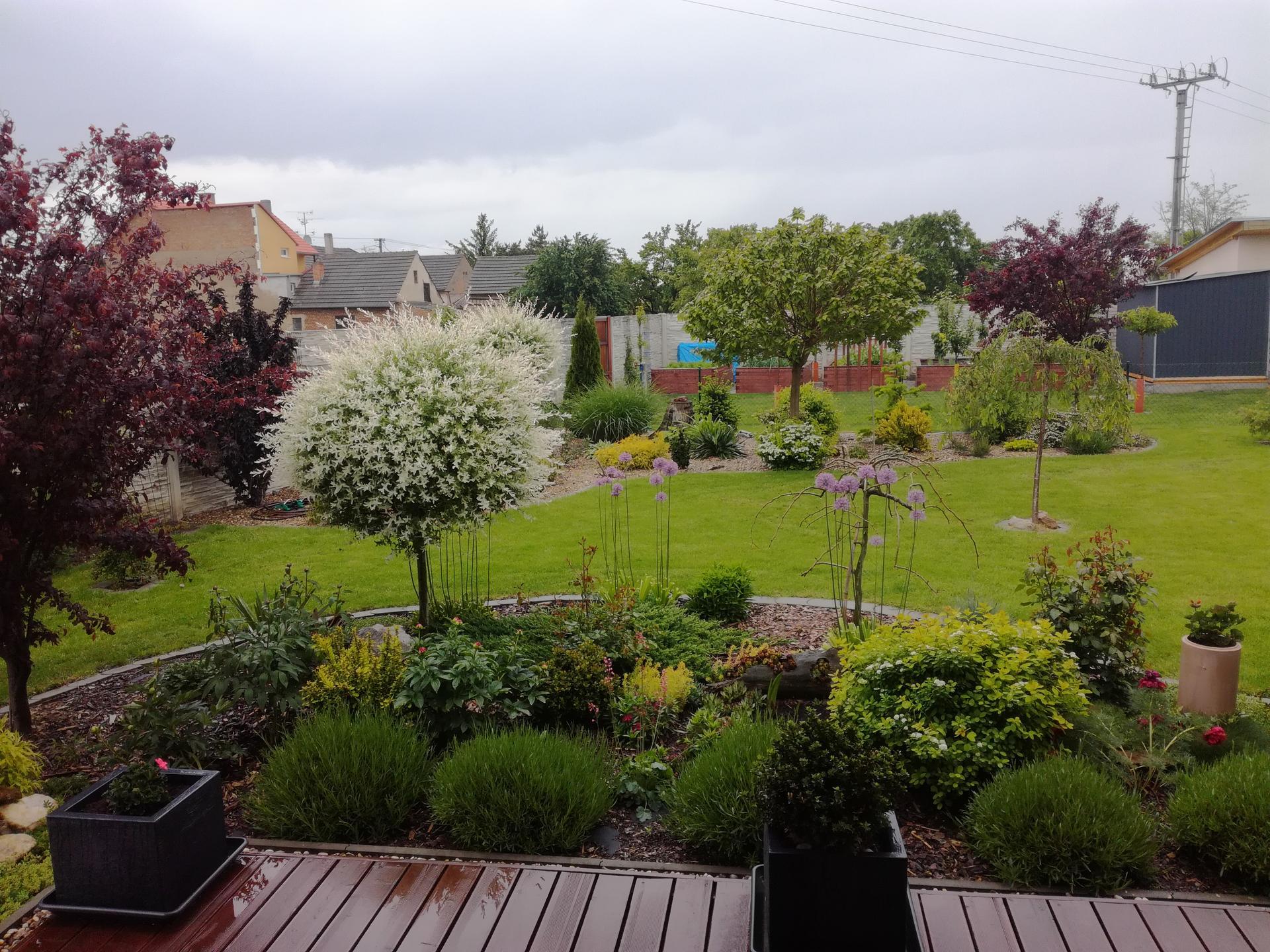 Zahrada 2021 🌲 - Obrázek č. 96