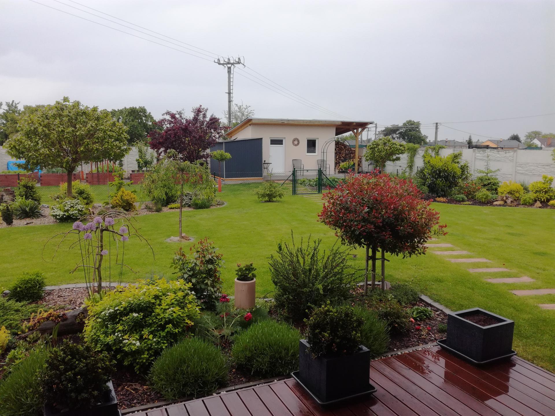 Zahrada 2021 🌲 - Obrázek č. 98