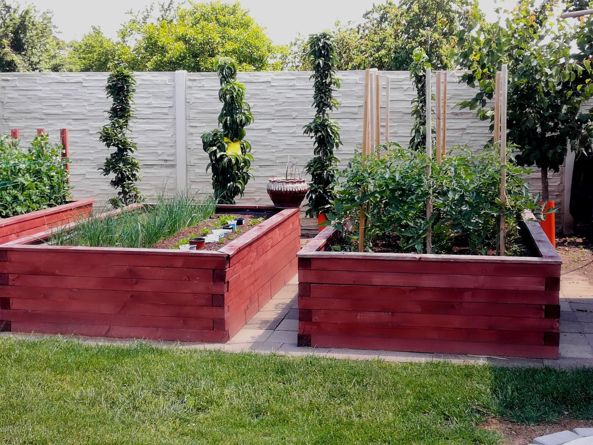 Zahrada 2021 🌲 - Obrázek č. 123