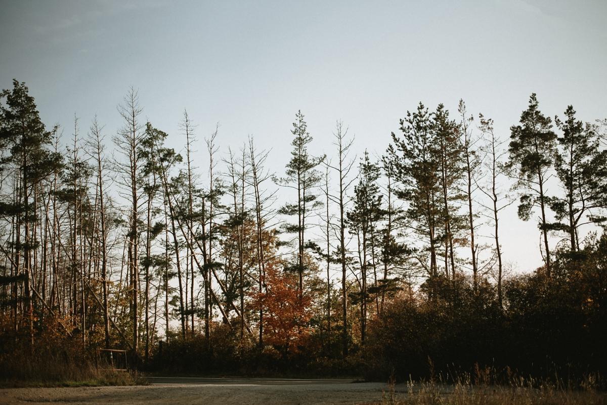 Zásnubní piknik, podzimní sluníčko, podzimní listí, pohodička - Obrázek č. 2