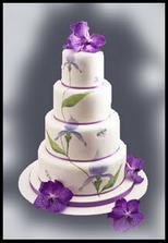 Náš dort , už je objednaný :-)