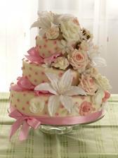 náš nádherný a výborný dortík