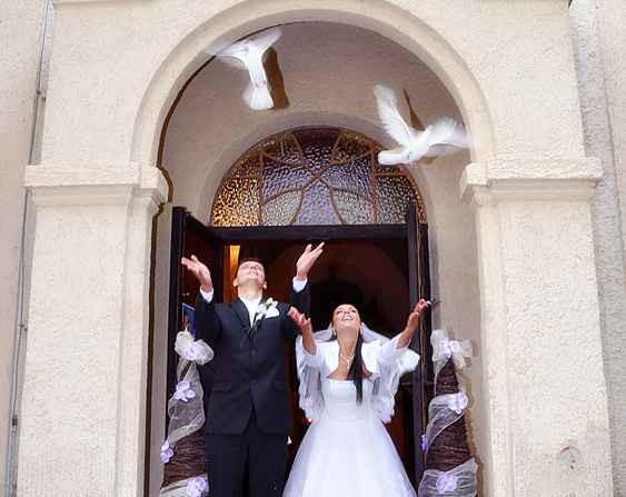 """""""Keby som sa mohla odviazať, moja svadba snov by vyzerala takto..."""" - holubice pre štatsie :)"""