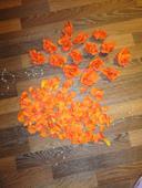 Oranžové plátky růží + růže,