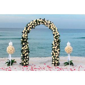 Svadba na plazi - Obrázok č. 3