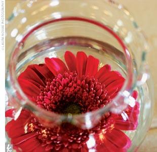 Svadobne vyzdoby cervena-bordova - Obrázok č. 30