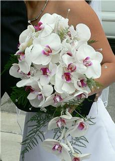 Svadobne kytice - Obrázok č. 211