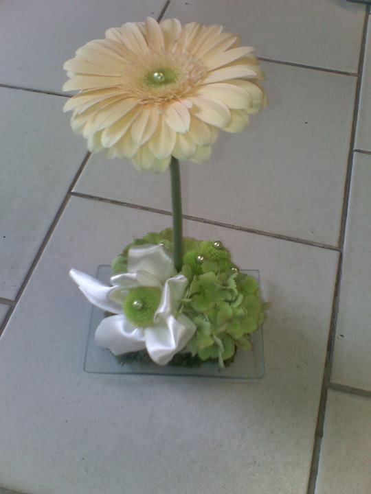 Květiny - na stoly