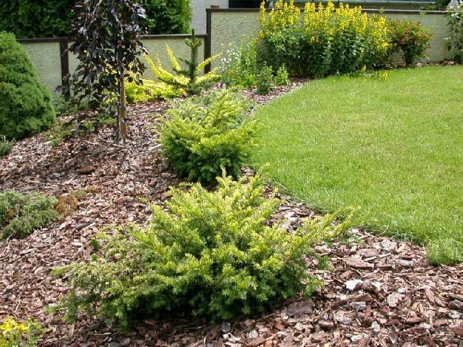 Interiér, záhrada, iné... - toto je jednoduché a pekné