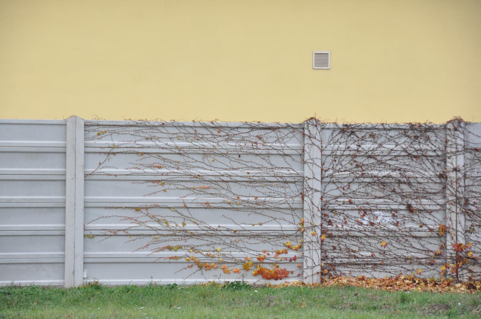 Betonovy plot z polska