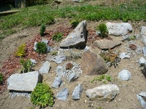 minuloročné založenie skalky