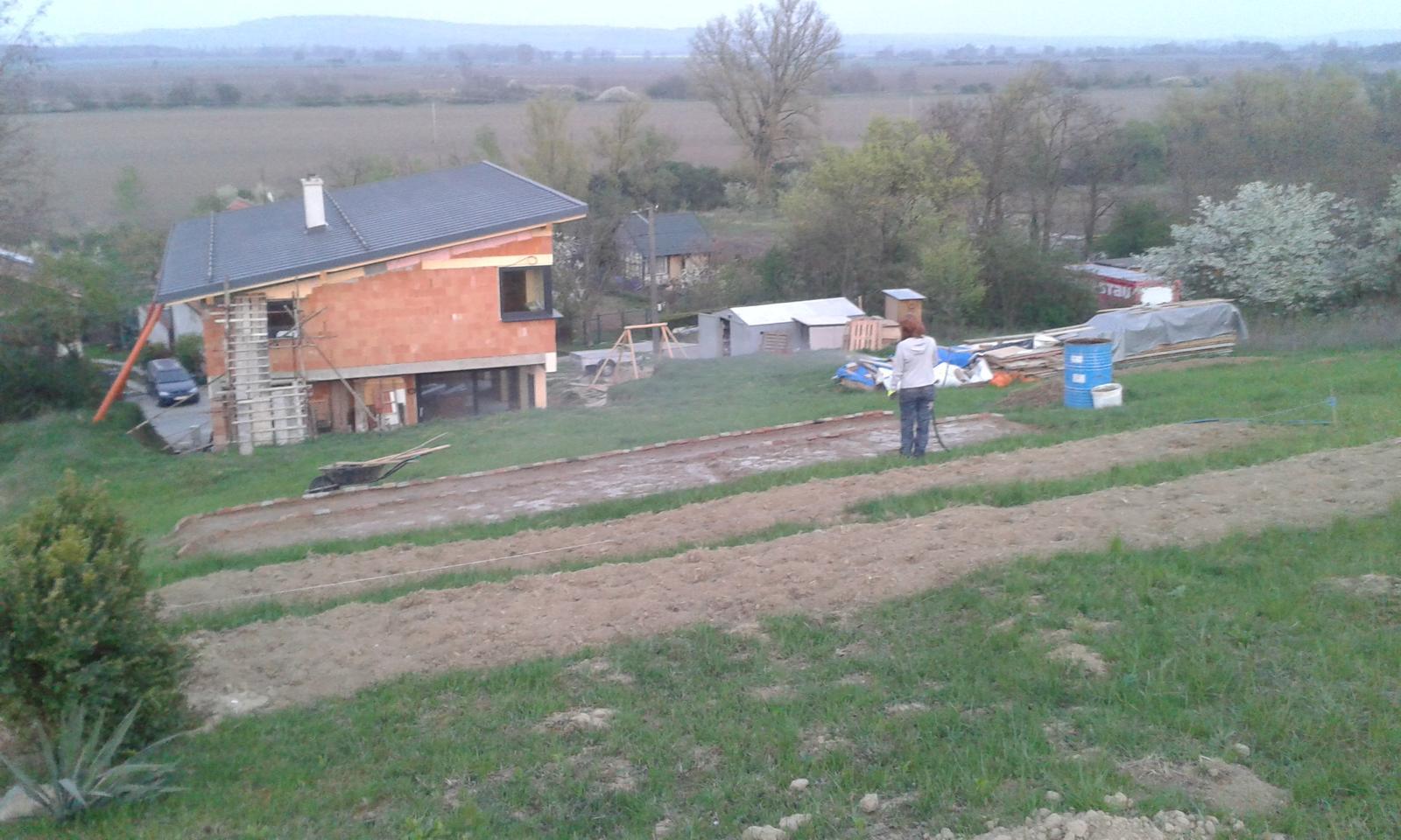 Okolie domu, záhrada - 12.4.2016 - Už sme čosi aj posadili - uvidíme či niečo z toho bude, alebo len krmivo pre polnú zver.