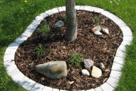 Zahrada - Obrázek č. 5