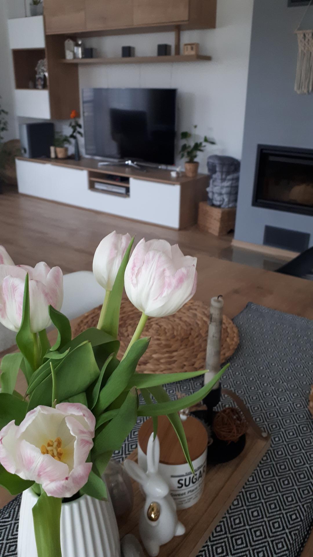 U nás 2021... aneb DOMA s láskou ❤ - Tyhle tulipány jsou neskutečné! Takhle krásné jsou už 8.den a stále drží 🌷💪👍. Hezký den.