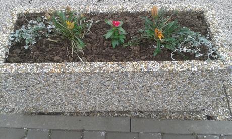 vymyvané kvetináče - Obrázok č. 1