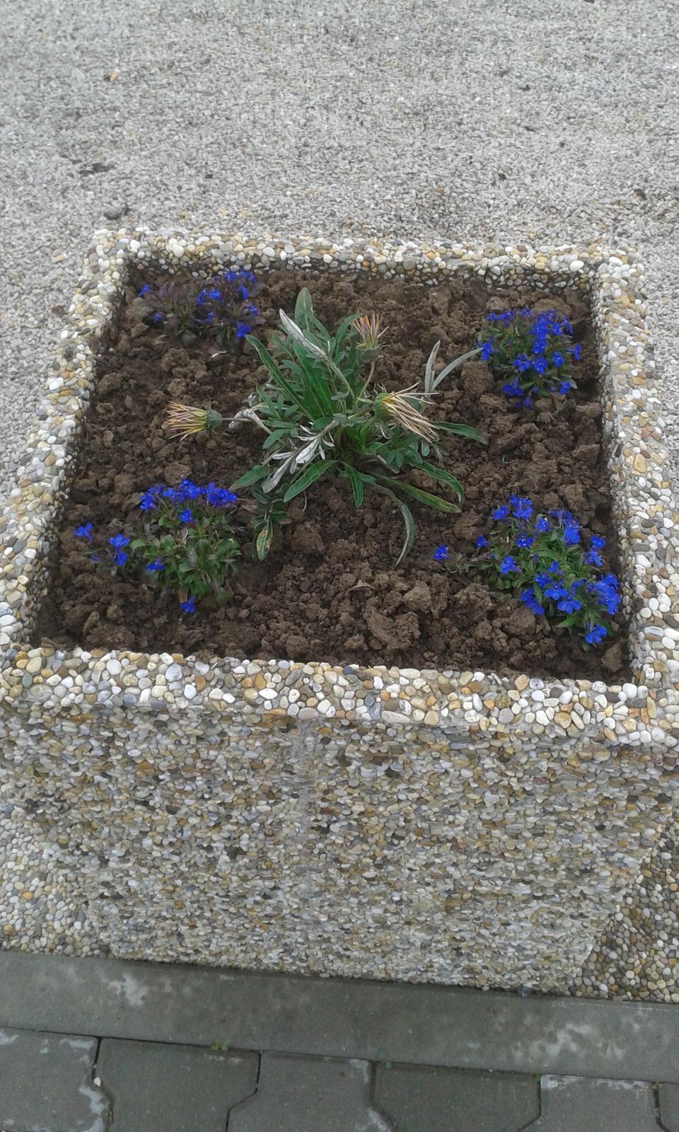 vymyvané kvetináče - Obrázok č. 2