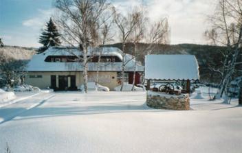 vila v zimě