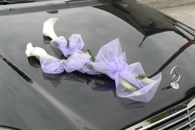 Výzdoba auta - Obrázek č. 92