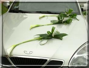květiny_auto 2