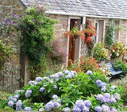 zahrada angl styl