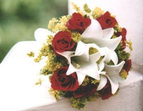 ... zanedlouho jsem uviděla tuto a lilie vyměnila za kaly a byl vítěz na světě.