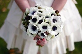 ♥Květiny♥ - Obrázek č. 57