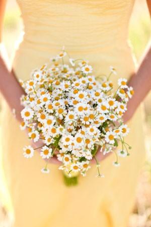 ♥Květiny♥ - Obrázek č. 33