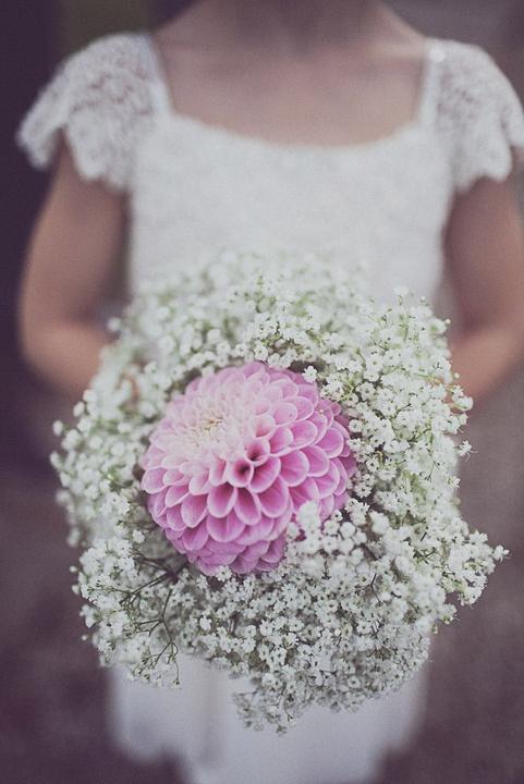 ♥Květiny♥ - Obrázek č. 69