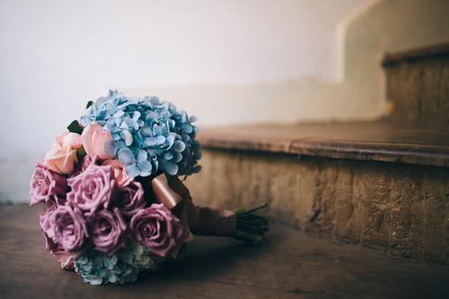 ♥Květiny♥ - Obrázek č. 84