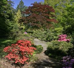 Arboretum Nový Dvůr