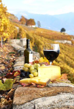 In vino veritas - Obrázek č. 33