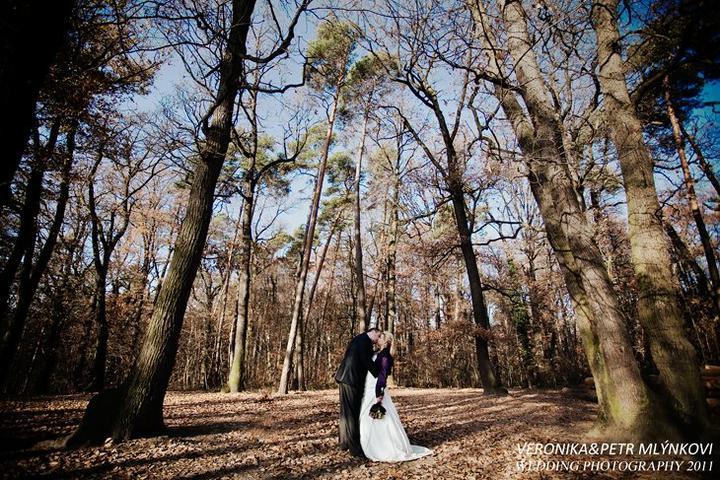 Krásné svatby z beremka, na které se jen tak nezapomene :) - petrajavor
