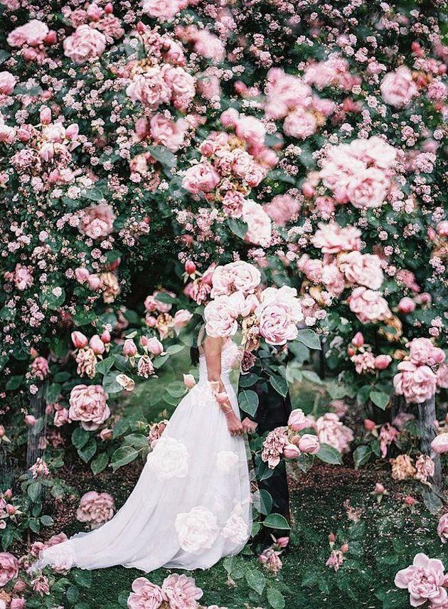 Foto - ženich a nevěsta - Obrázek č. 379