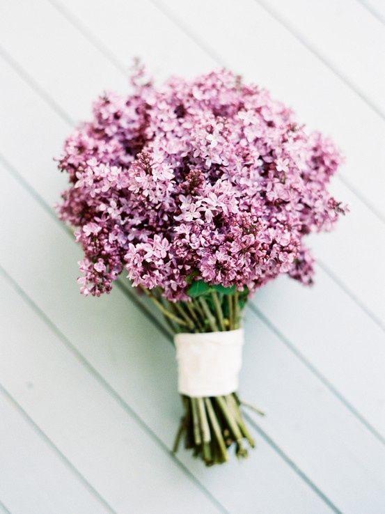 ♥Květiny♥ - Obrázek č. 122